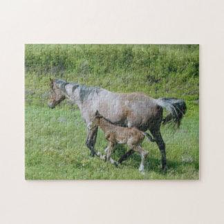 Yegua cuarta del caballo con el potro en el lado rompecabeza con fotos