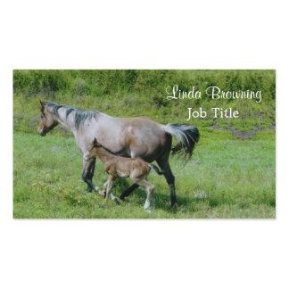 Yegua cuarta del caballo con el potro en el lado tarjetas de visita