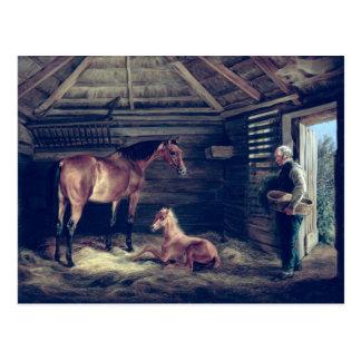Yegua inglesa con ella potros, 1833 postales