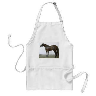 Yegua negra del rancho del caballo delantales