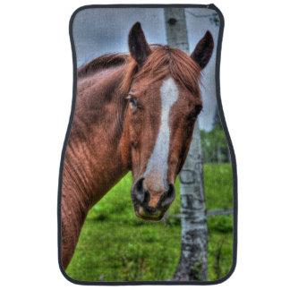 Yegua roja del caballo del Dun y foto equina del Alfombrilla De Auto