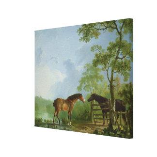 Yegua y semental en un paisaje impresion de lienzo