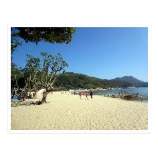 yeh playa shing colgada postales