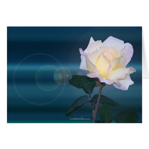 yel_rose_lens glare greeting card