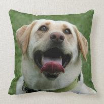 Yelllow Labrador Retriever Pillows