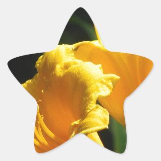 Yello Lillies Pegatina En Forma De Estrella