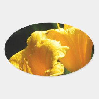 Yello Lillies Pegatina Ovalada