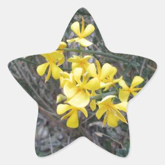 Yello Star Sticker