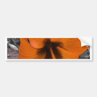 yellos hibiscus car bumper sticker