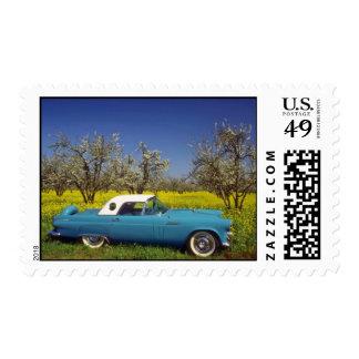 yellow 57 T-Bird flowers Postage Stamp
