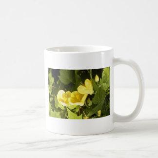 yellow Abutilon Species Flowering Maple flowers Classic White Coffee Mug