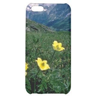 yellow Alpine pasqueflower flowers iPhone 5C Covers