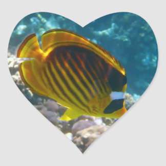 Yellow and Black Angel Fish Heart Sticker