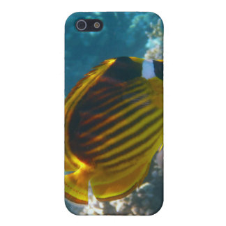 Yellow and Black Angel Fish iPhone SE/5/5s Cover
