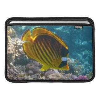 Yellow and Black Angel Fish MacBook Air Sleeve
