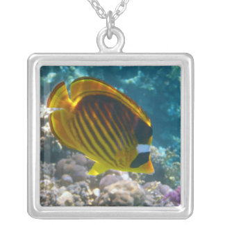 Yellow and Black Angel Fish Silver Plated Necklace