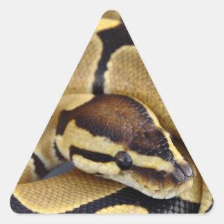 Yellow and Black Ball Python 3 Triangle Sticker