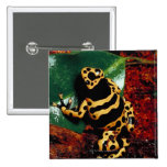 Yellow and Black Frog 2 Inch Square Button