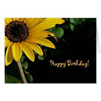 Yellow and Black, Happy Birthday! Card