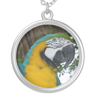 Yellow and Blue Macaw Necklace
