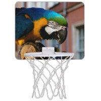 Yellow and Blue Macaw, Parrot Bird Animal Mini Basketball Hoop