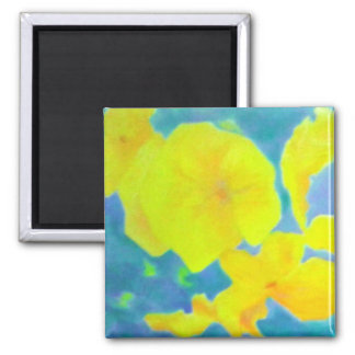 Yellow and blue magnet