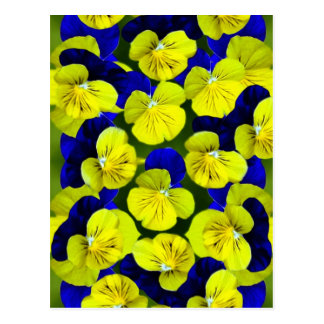 Yellow and blue pansies postcard