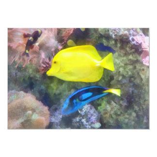 Yellow and Blue Tang Fish Card