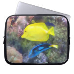 Yellow and Blue Tang Fish Laptop Computer Sleeve