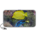 Yellow and Blue Tang Fish Portable Speakers