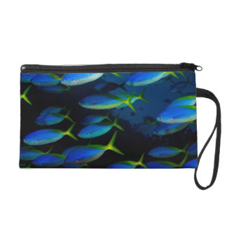Yellow and blueback fusil fish in Fiji Wristlet Clutches