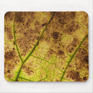 Yellow and Brown Dry Dying Leaf Mouse Pad
