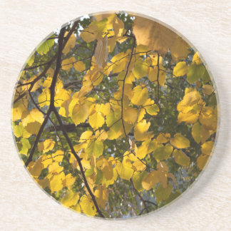 Yellow and green autumn leaves coaster