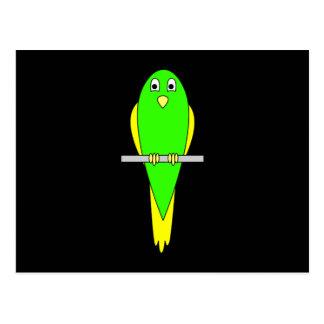 Yellow and Green Bird. Parakeet. Black Postcard