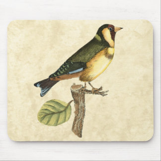 Yellow and Green Bird Perched on a Little Branch Mouse Pad