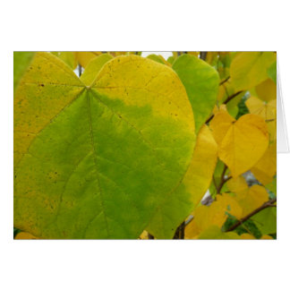 Yellow and Green Redbud Leaves Autumn Nature Card