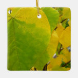 Yellow and Green Redbud Leaves Autumn Nature Ceramic Ornament