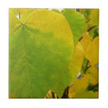Yellow and Green Redbud Leaves Autumn Nature Ceramic Tile