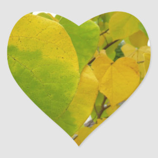 Yellow and Green Redbud Leaves Autumn Nature Heart Sticker