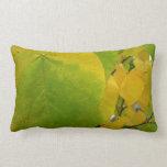 Yellow and Green Redbud Leaves Autumn Nature Lumbar Pillow
