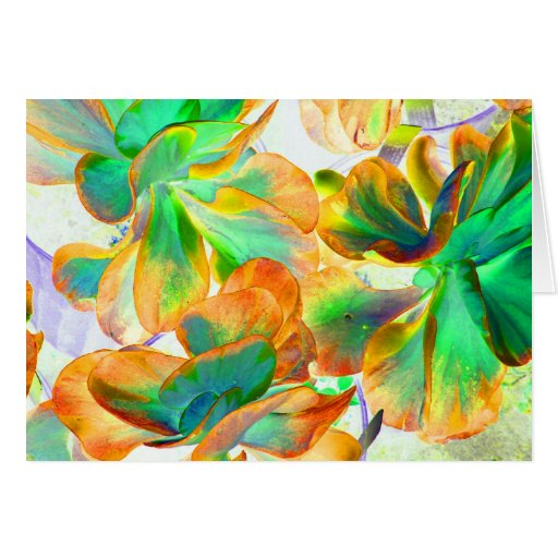 yellow and green succulent colorized greeting cards