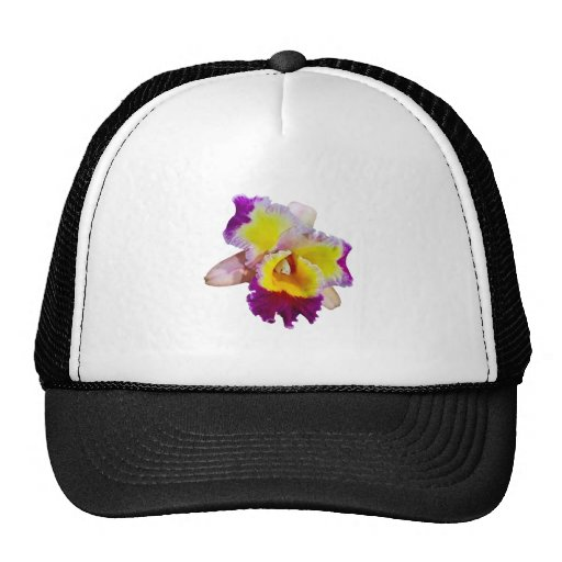 Yellow and Magenta Cattleya Orchid Mesh Hat