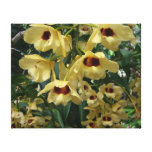 Yellow and Maroon Orchids Elegant Floral Photo Canvas Print