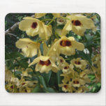 Yellow and Maroon Orchids Elegant Floral Photo Mouse Pad