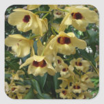 Yellow and Maroon Orchids Elegant Floral Photo Square Sticker