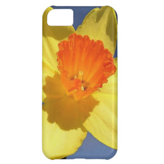 Yellow and Orange Colored Daffodil Case For iPhone 5C