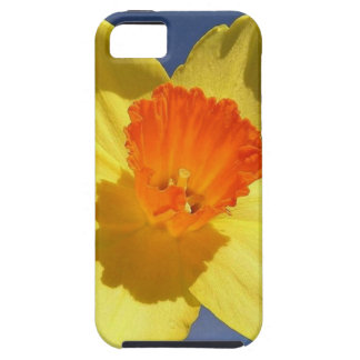 Yellow and Orange Colored Daffodil iPhone SE/5/5s Case