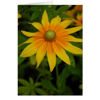 Yellow and Orange Flower Card