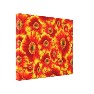 Yellow and Orange Gerbera Daisies Stretched Canvas Prints