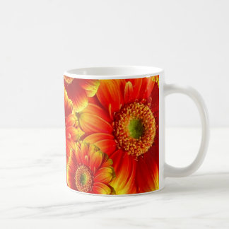Yellow and Orange Gerbera Daisies Coffee Mugs
